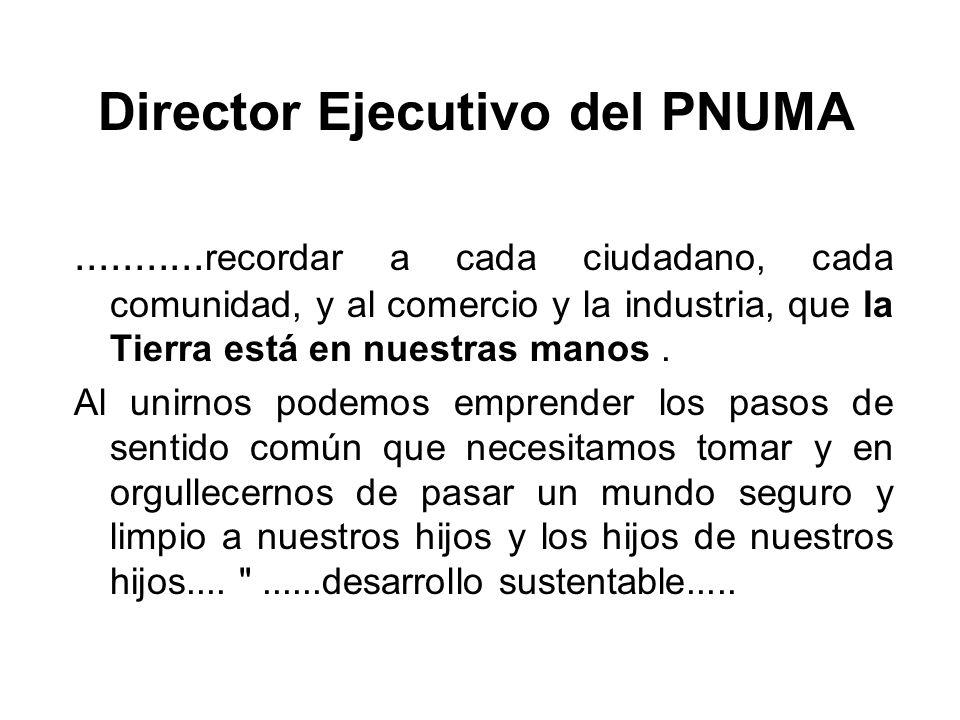 Director Ejecutivo del PNUMA