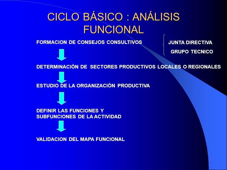 CICLO BÁSICO : ANÁLISIS FUNCIONAL