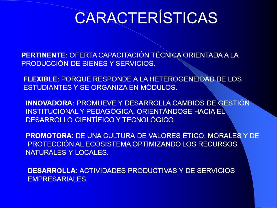 CARACTERÍSTICAS PERTINENTE: OFERTA CAPACITACIÓN TÉCNICA ORIENTADA A LA PRODUCCIÓN DE BIENES Y SERVICIOS.
