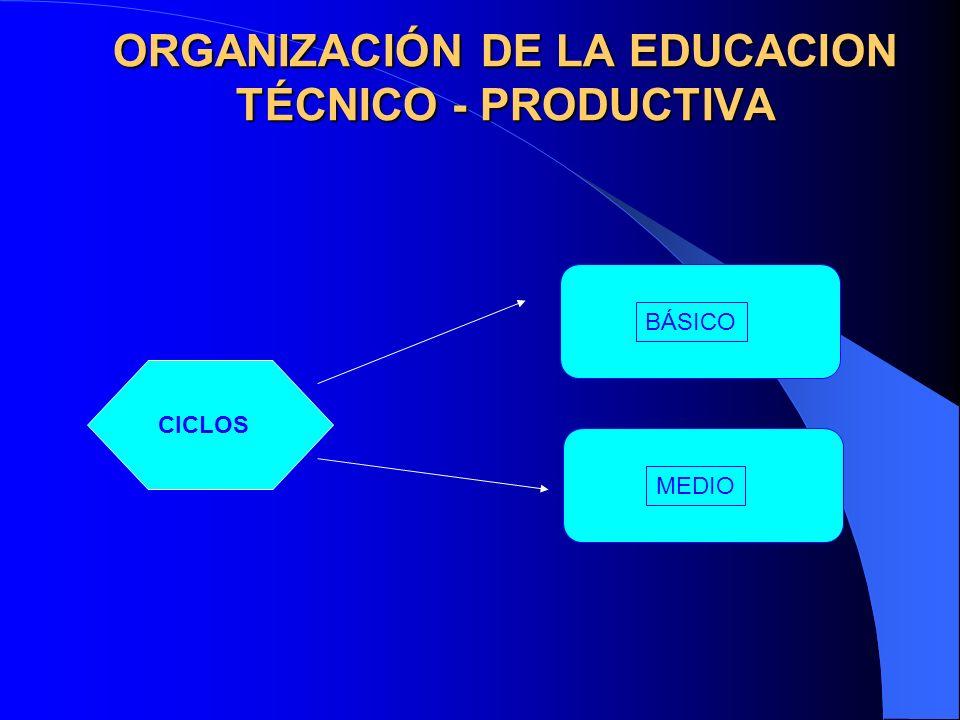 ORGANIZACIÓN DE LA EDUCACION TÉCNICO - PRODUCTIVA