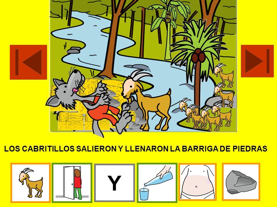 LOS CABRITILLOS SALIERON Y LLENARON LA BARRIGA DE PIEDRAS