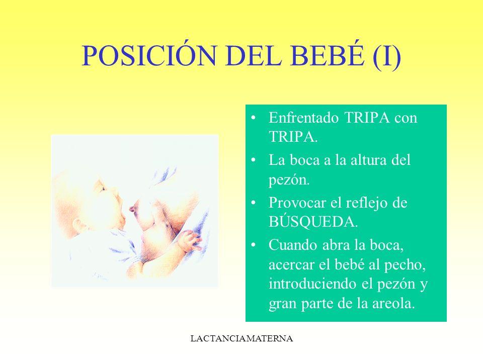 POSICIÓN DEL BEBÉ (I) Enfrentado TRIPA con TRIPA.