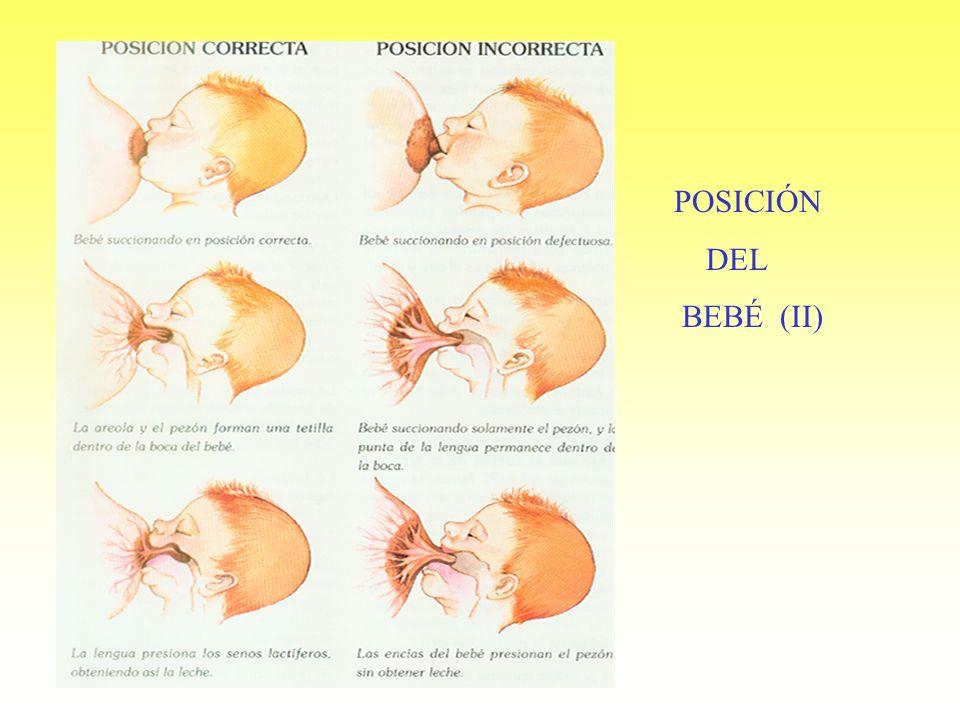 POSICION POSICIÓN DEL BEBÉ (II)