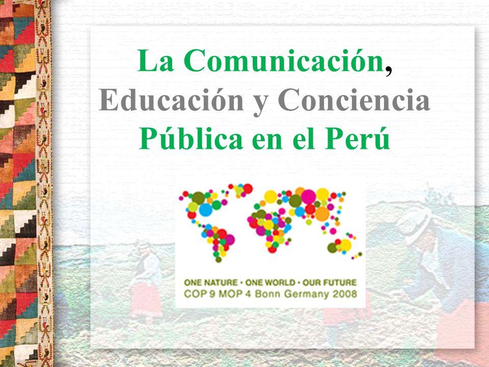La Comunicación, Educación y Conciencia Pública en el Perú