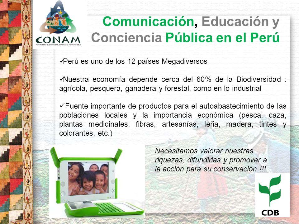 Comunicación, Educación y Conciencia Pública en el Perú