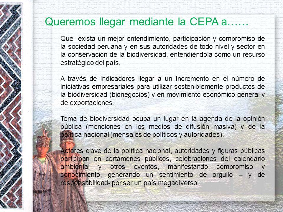 Queremos llegar mediante la CEPA a……