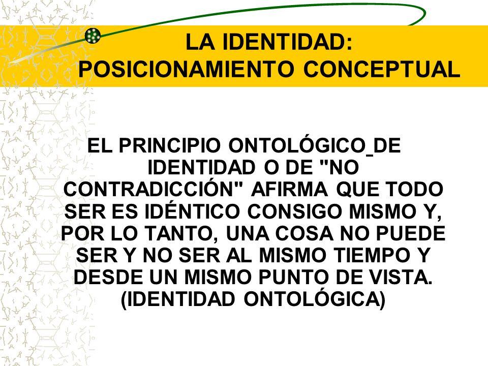 LA IDENTIDAD: POSICIONAMIENTO CONCEPTUAL