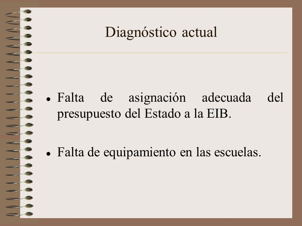 Diagnóstico actual Falta de asignación adecuada del presupuesto del Estado a la EIB.