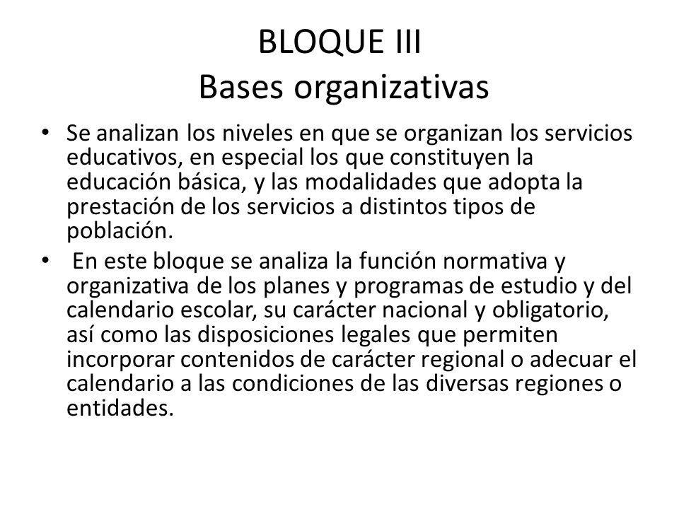 BLOQUE III Bases organizativas