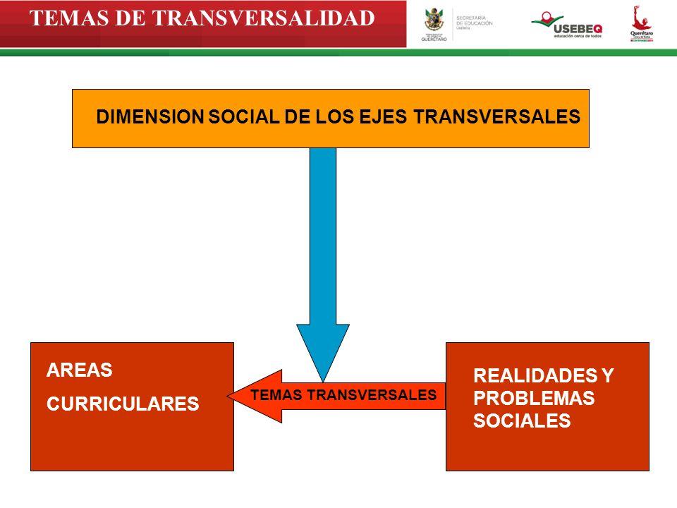 DIMENSION SOCIAL DE LOS EJES TRANSVERSALES