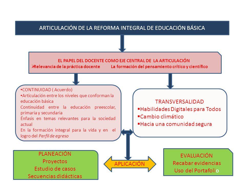 EL PAPEL DEL DOCENTE COMO EJE CENTRAL DE LA ARTICULACIÓN