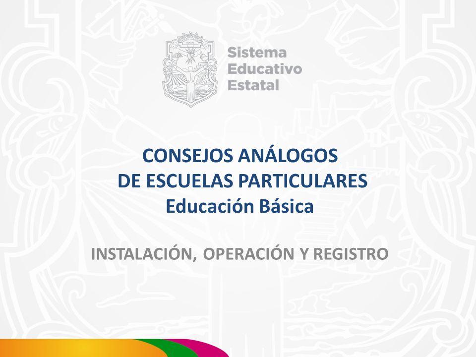 CONSEJOS ANÁLOGOS DE ESCUELAS PARTICULARES Educación Básica