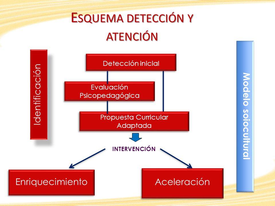 Esquema detección y atención