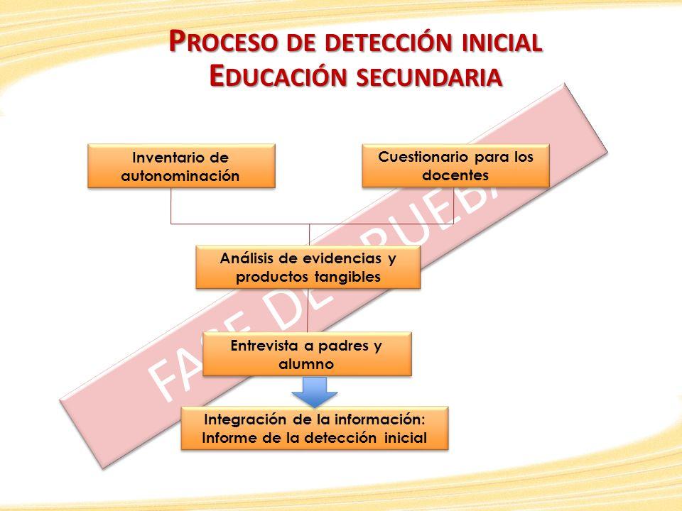 FASE DE PRUEBA Proceso de detección inicial Educación secundaria
