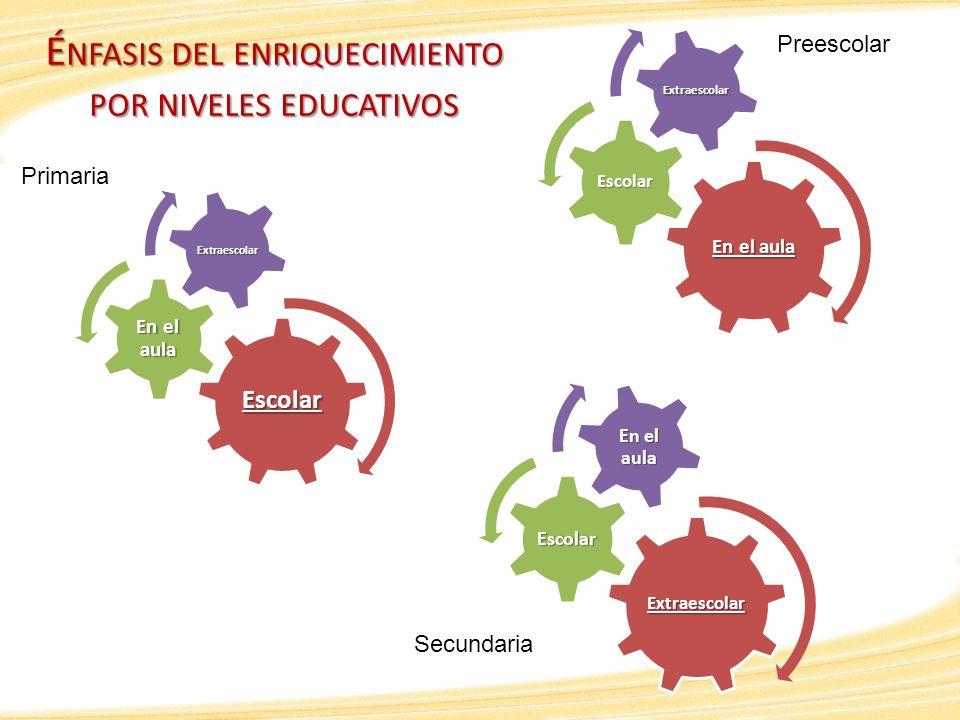 Énfasis del enriquecimiento por niveles educativos