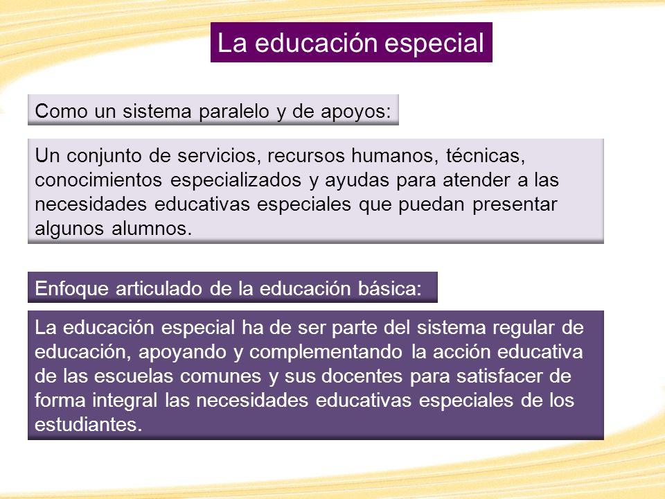 La educación especial Como un sistema paralelo y de apoyos:
