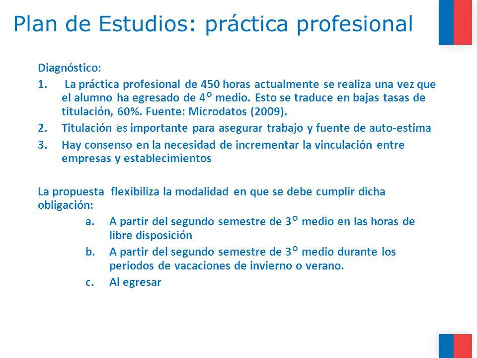 Plan de Estudios: práctica profesional