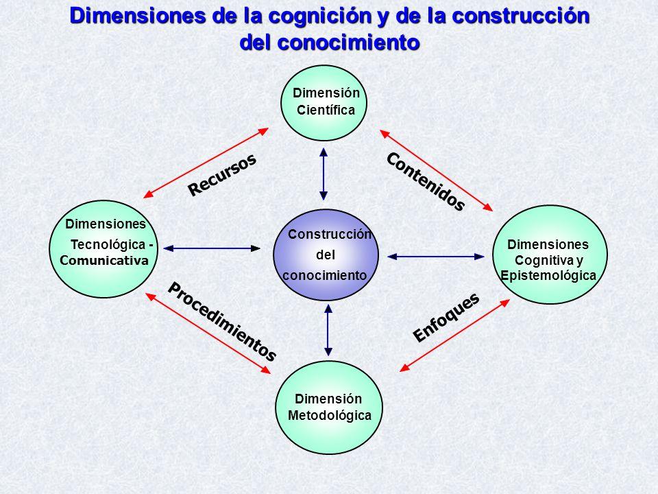 Dimensiones de la cognición y de la construcción del conocimiento
