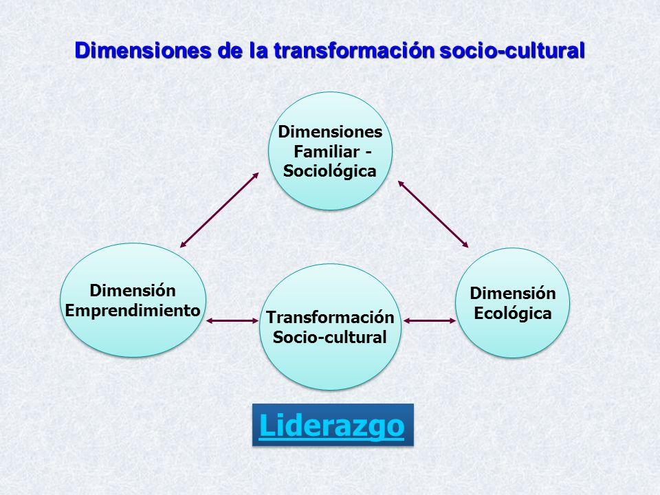 Dimensiones de la transformación socio-cultural