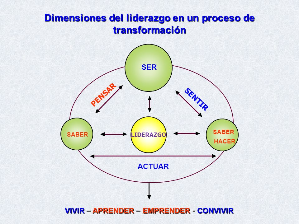 Dimensiones del liderazgo en un proceso de transformación