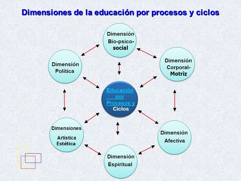 Dimensiones de la educación por procesos y ciclos