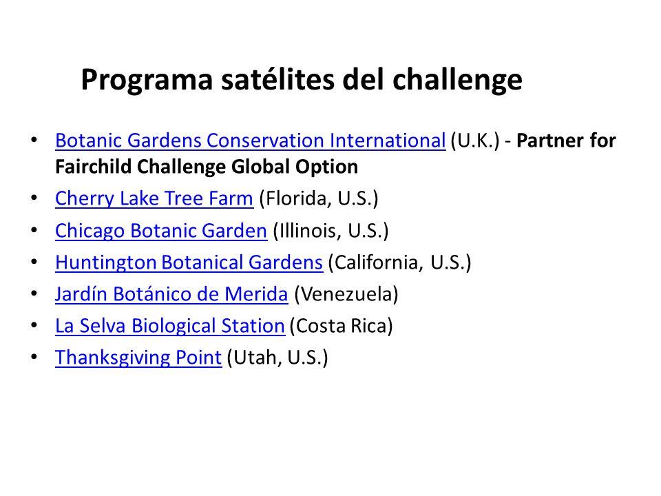 Programa satélites del challenge