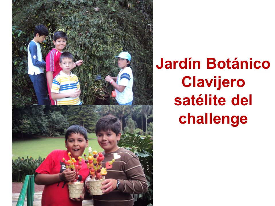 Jardín Botánico Clavijero satélite del challenge