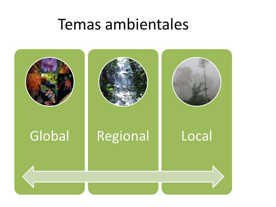 Temas ambientales Global Regional Local