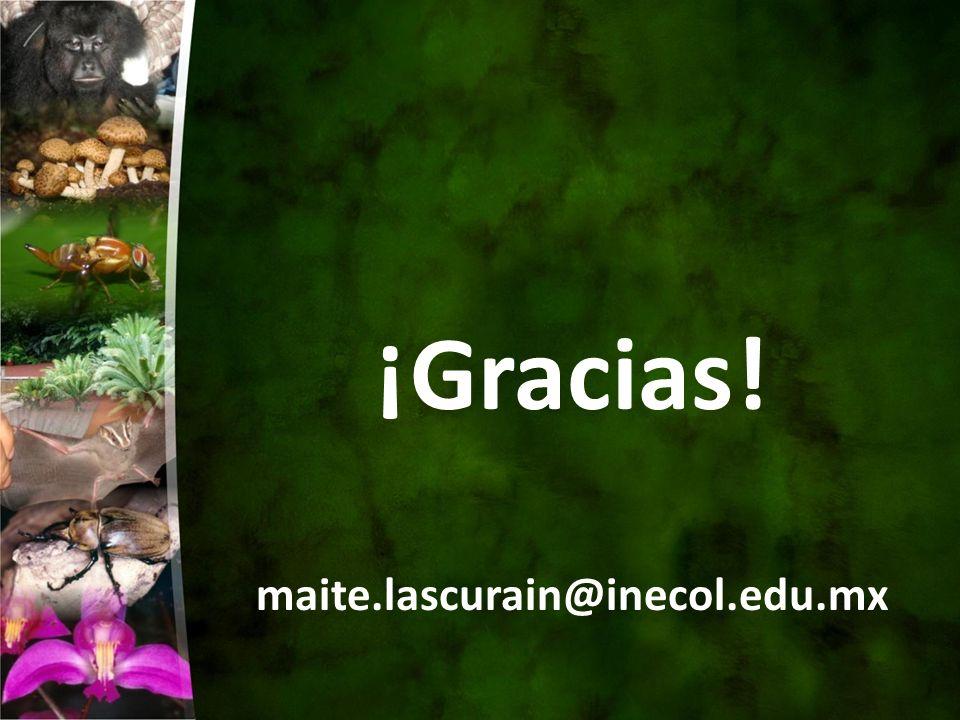 ¡Gracias! maite.lascurain@inecol.edu.mx