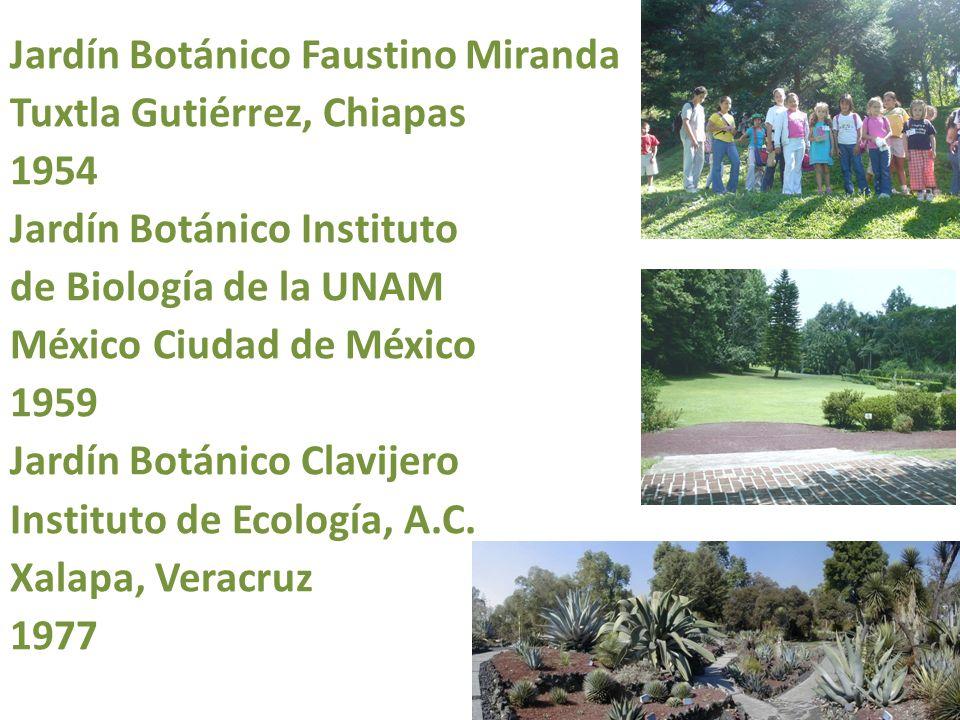 Jardín Botánico Faustino Miranda Tuxtla Gutiérrez, Chiapas 1954 Jardín Botánico Instituto de Biología de la UNAM México Ciudad de México 1959 Jardín Botánico Clavijero Instituto de Ecología, A.C.