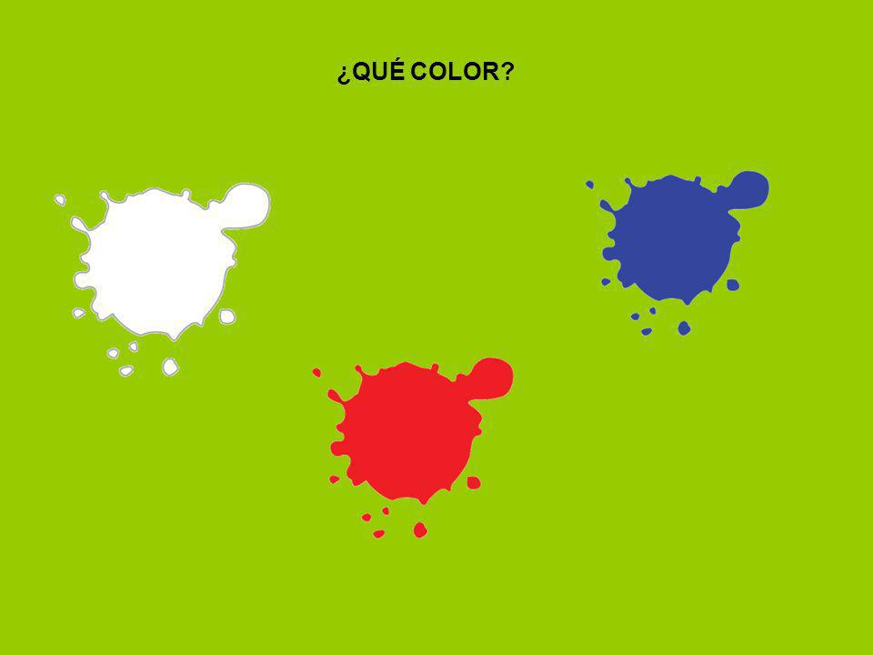 ¿QUÉ COLOR