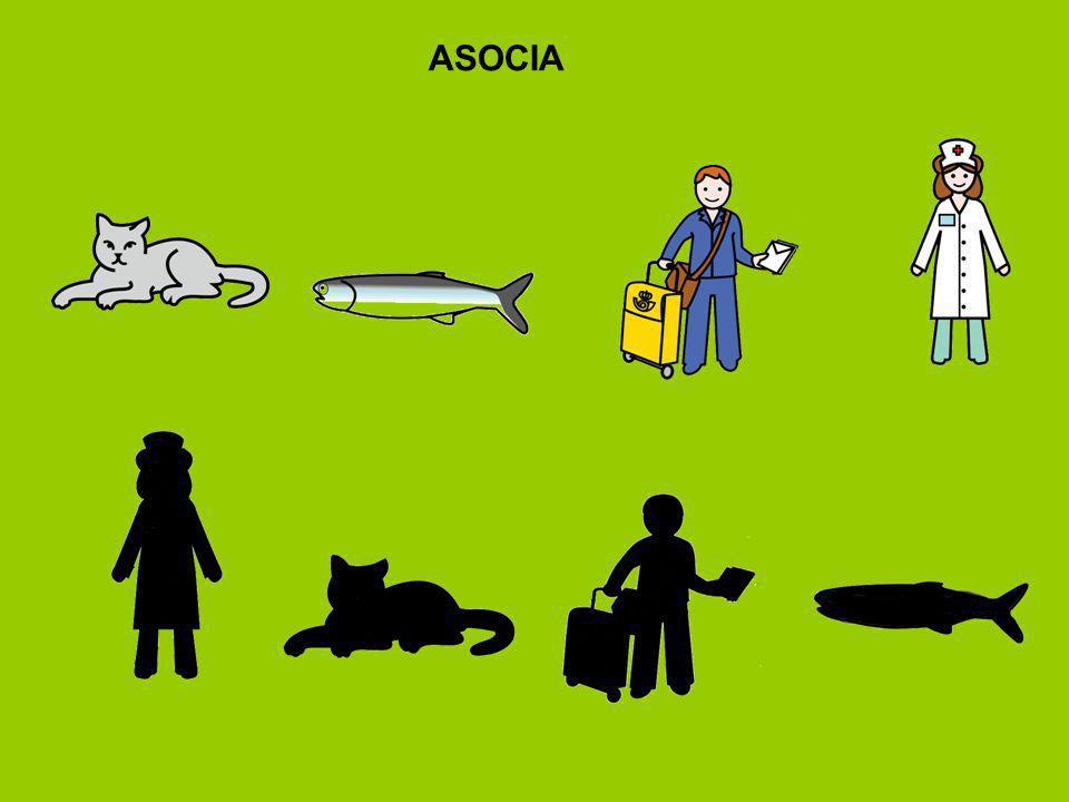 ASOCIA