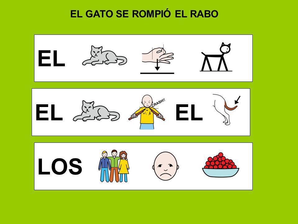 EL GATO SE ROMPIÓ EL RABO