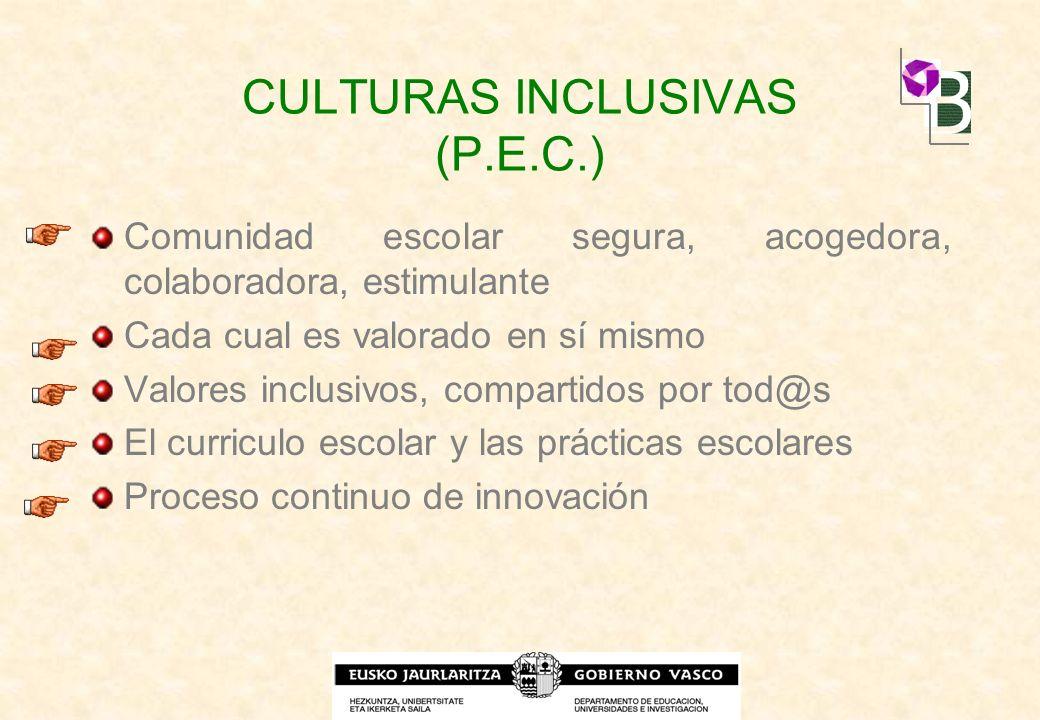CULTURAS INCLUSIVAS (P.E.C.)
