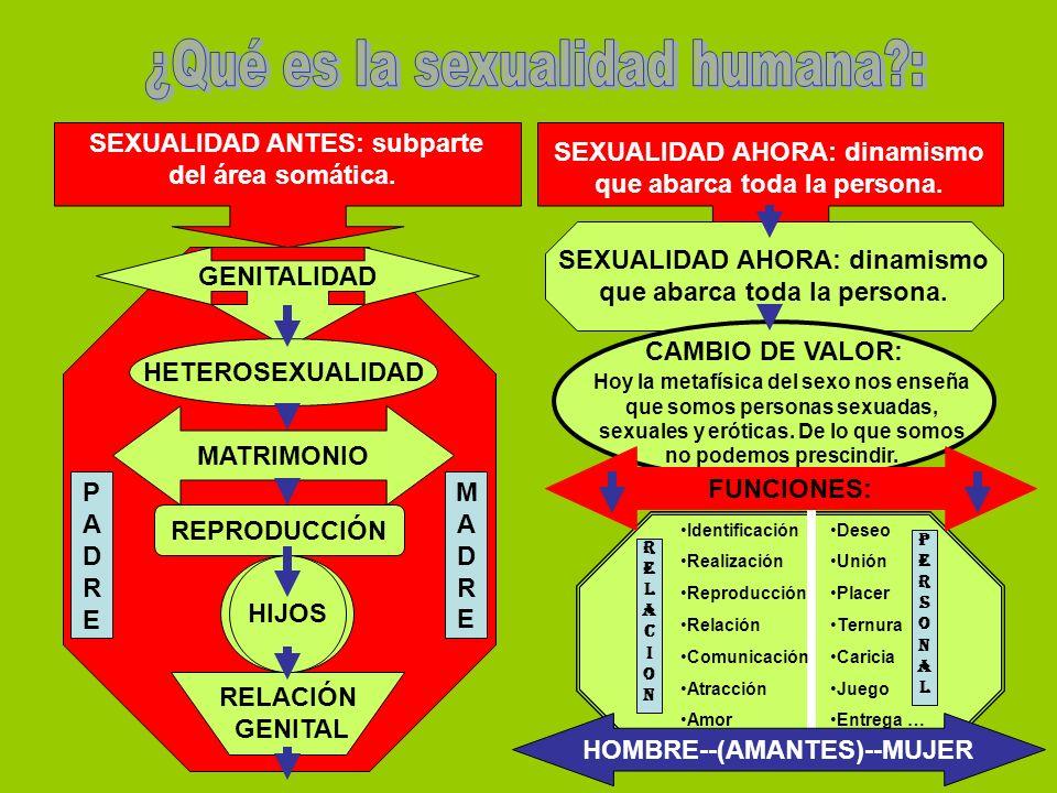 ¿Qué es la sexualidad humana :