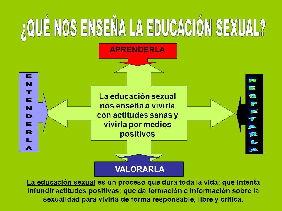 ¿QUÉ NOS ENSEÑA LA EDUCACIÓN SEXUAL