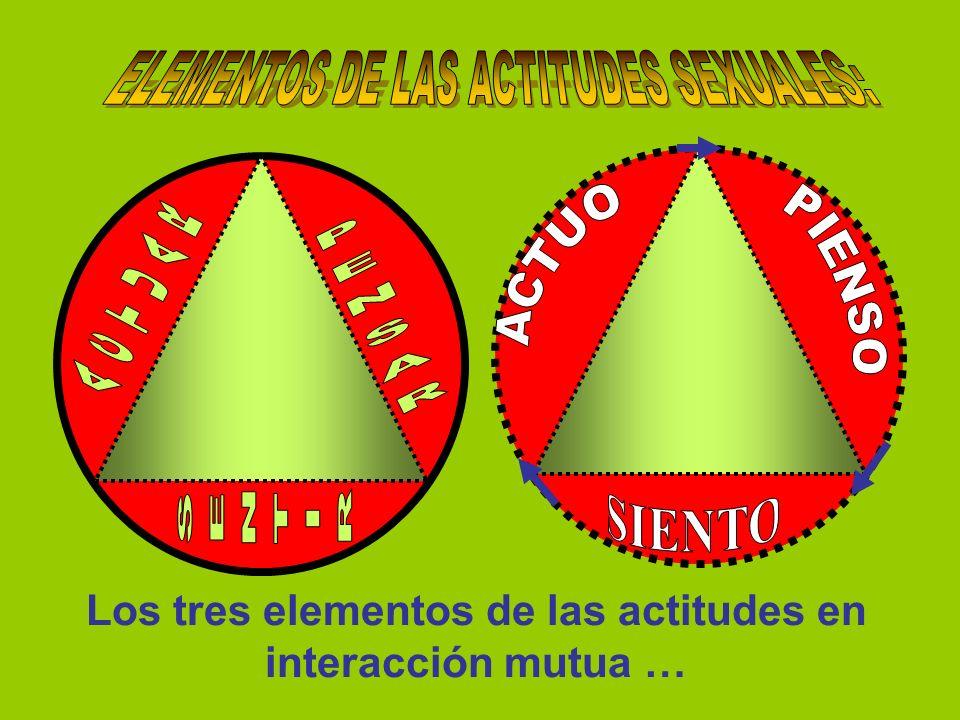 ELEMENTOS DE LAS ACTITUDES SEXUALES: