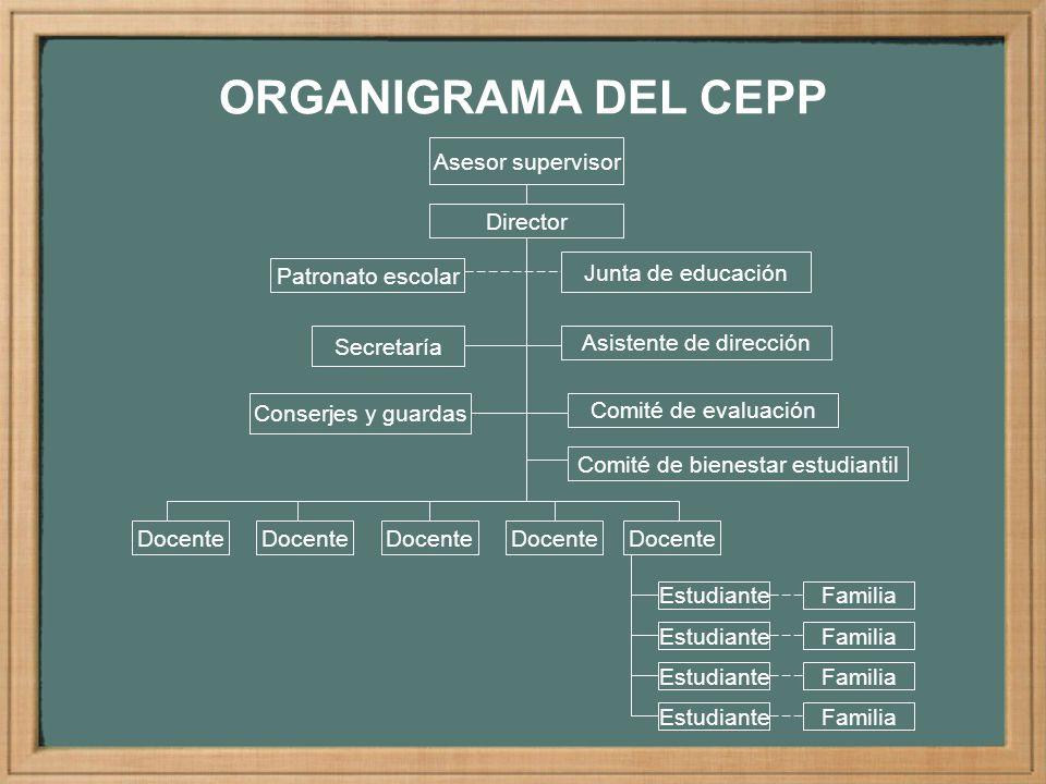 ORGANIGRAMA DEL CEPP Asesor supervisor Director Patronato escolar