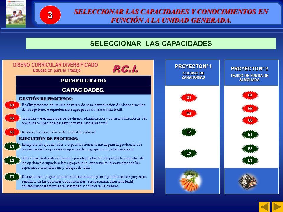 3 SELECCIONAR LAS CAPACIDADES Y CONOCIMIENTOS EN FUNCIÓN A LA UNIDAD GENERADA. SELECCIONAR LAS CAPACIDADES.