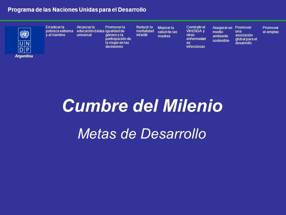 Cumbre del Milenio Metas de Desarrollo