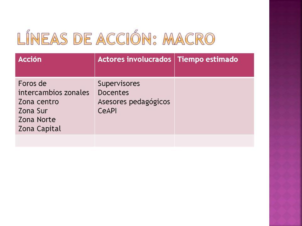 Líneas de acción: macro