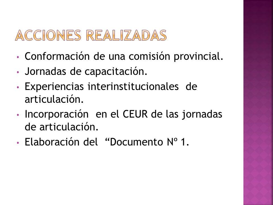 Acciones realizadas Conformación de una comisión provincial.