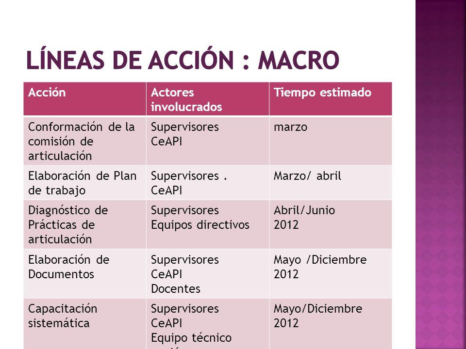 Líneas de acción : MACRO