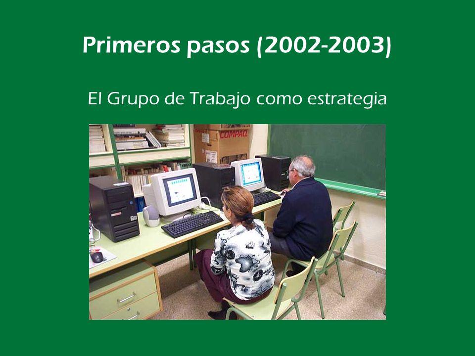 El Grupo de Trabajo como estrategia