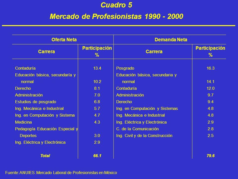 Mercado de Profesionistas 1990 - 2000