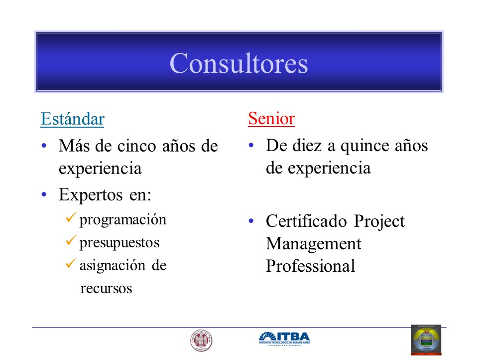 Consultores Estándar Senior Más de cinco años de experiencia