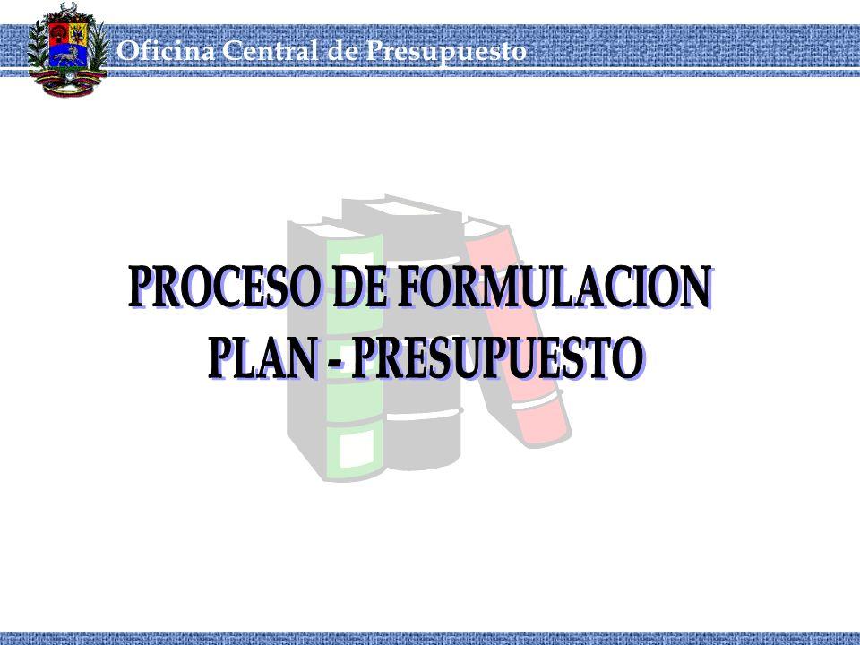 PROCESO DE FORMULACION