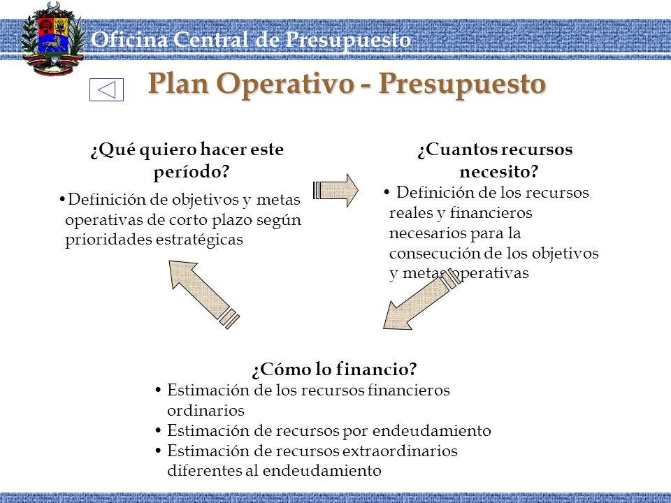 Plan Operativo - Presupuesto