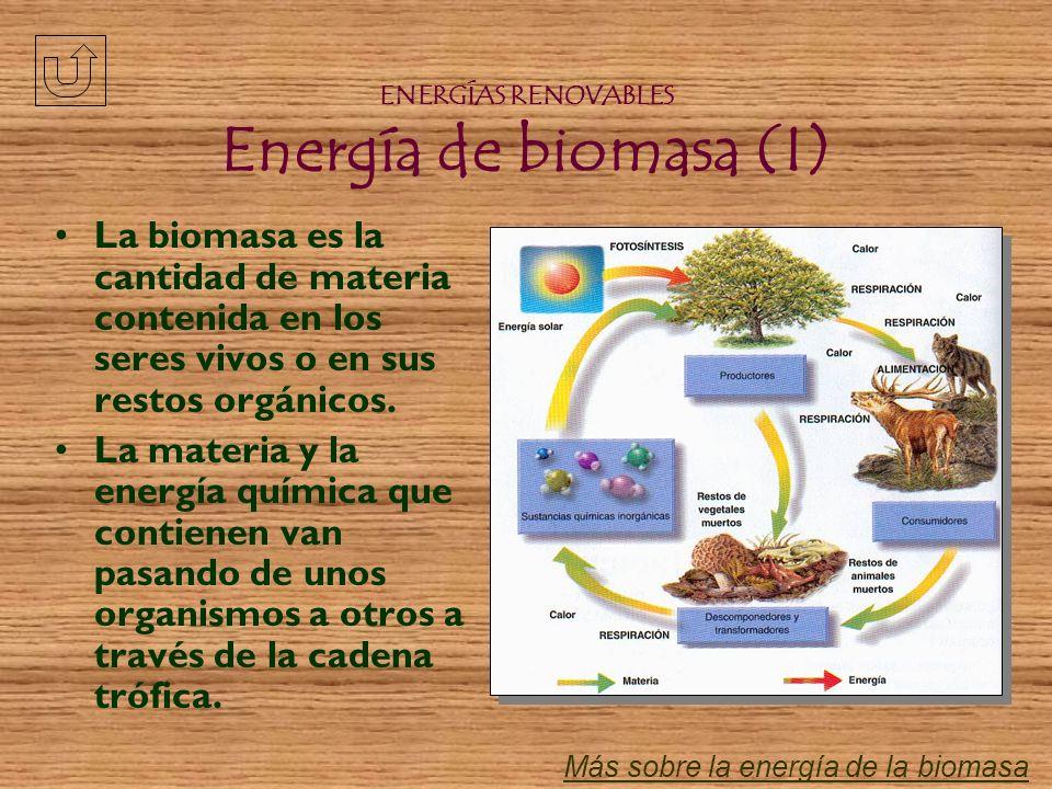 ENERGÍAS RENOVABLES Energía de biomasa (I)