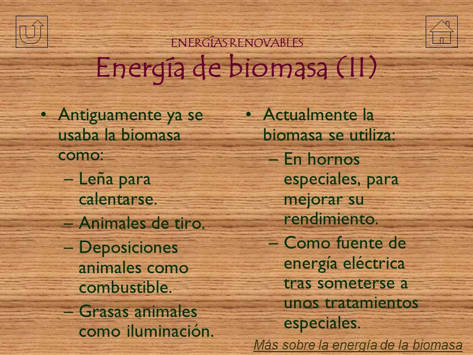 ENERGÍAS RENOVABLES Energía de biomasa (II)